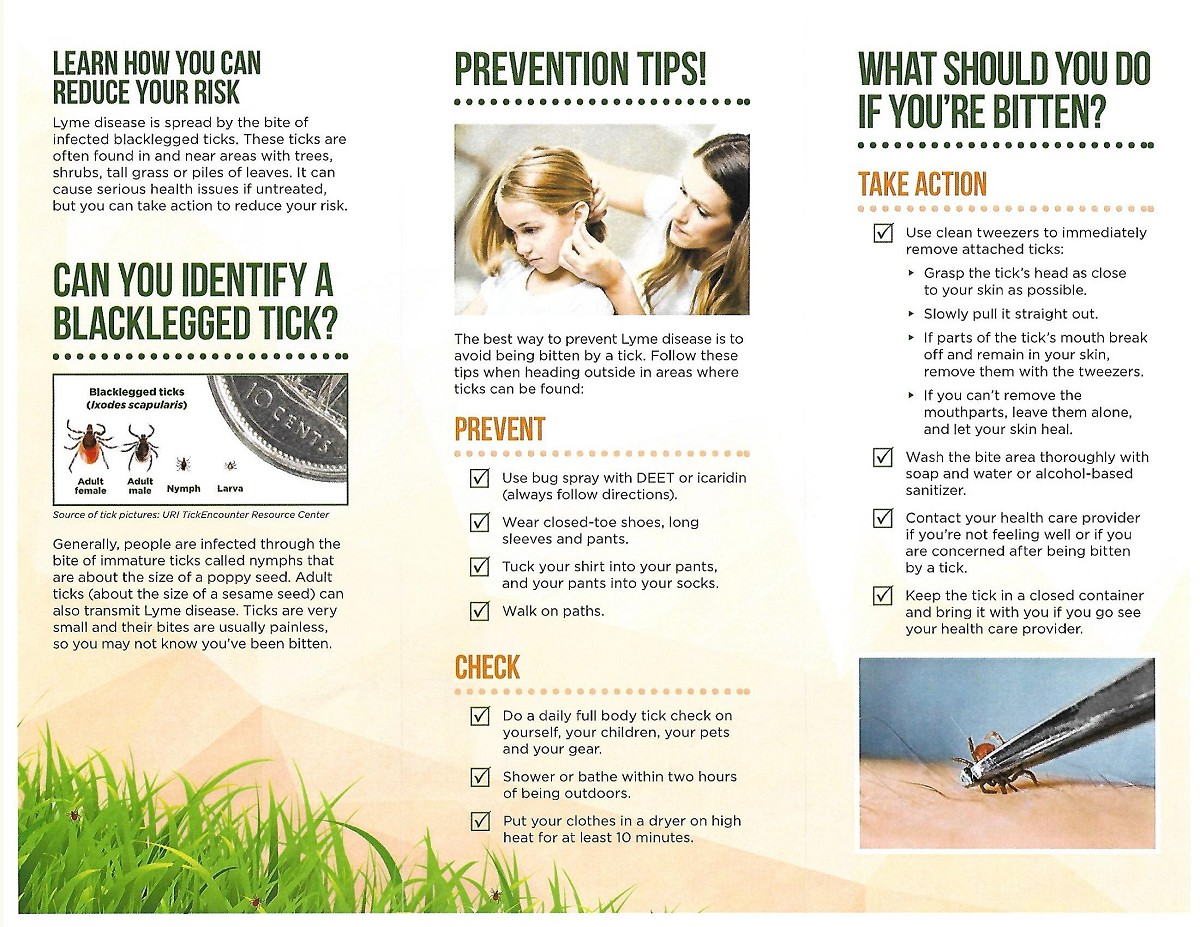 lyme-disease-and-tick-information-page-2